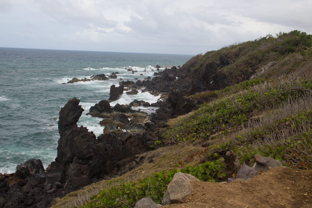 Lava Rock Coast Line