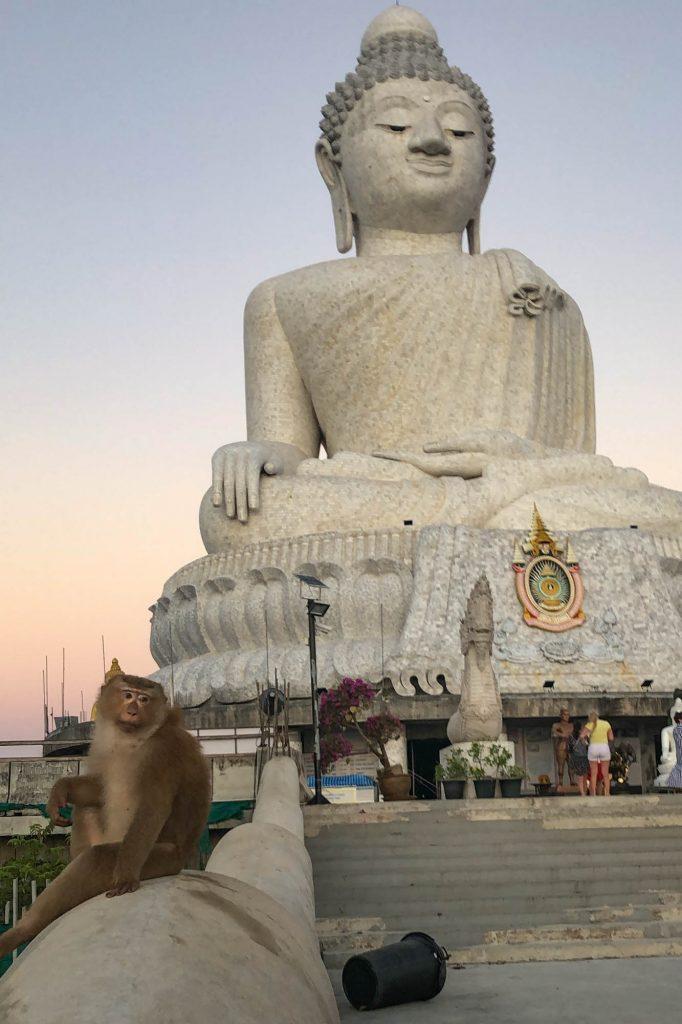 Big Buddha Monkey Phuket