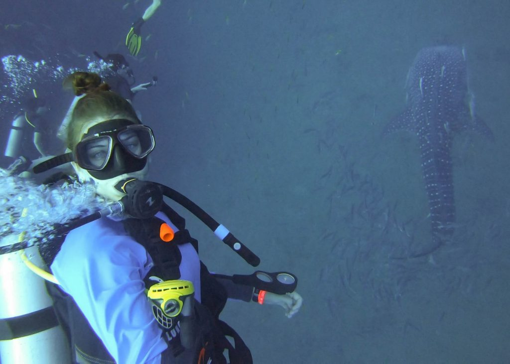Koh Tao Scuba Diving